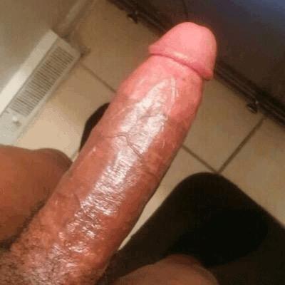 mlady zajicek nabizi sexualni sluzby